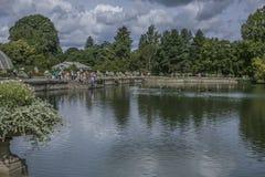 Lo stagno ai giardini di Kew ed alle anatre fotografia stock