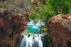 Lo stagno alla cima di Havasu cade in Arizona Immagine Stock Libera da Diritti