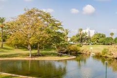 Lo stagno artificiale in parco Fotografie Stock Libere da Diritti