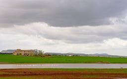 Lo stagno del villaggio un il giorno nuvoloso fotografia stock libera da diritti