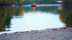 Lo stagno di autunno video d archivio