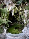 Lo stagno sul giardino di Quinta da Regaleira è una proprietà situata vicino al centro storico di Sintra, Portogallo Fotografia Stock