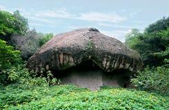 Lo stessi delle pietre del fungo Fotografia Stock Libera da Diritti
