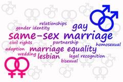 Lo stesso matrimonio del sesso Fotografia Stock Libera da Diritti