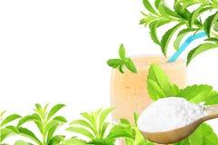 Lo stevia rebaudiana e la polvere verdi freschi dell'estratto in cucchiaio di legno con le bevande vetro e testo copiano lo spazi Fotografie Stock