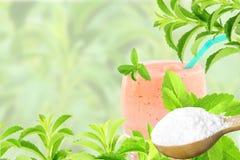 Lo stevia rebaudiana e la polvere verdi freschi dell'estratto in cucchiaio di legno con le bevande vetro e testo copiano lo spazi Fotografia Stock Libera da Diritti