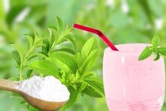 Lo stevia rebaudiana e la polvere verdi freschi dell'estratto in cucchiaio di legno con le bevande vetro e testo copiano lo spazi Immagine Stock Libera da Diritti