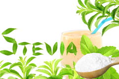 Lo stevia rebaudiana e la polvere verdi freschi dell'estratto in cucchiaio di legno con le foglie di vetro delle bevande mandano  Fotografia Stock Libera da Diritti