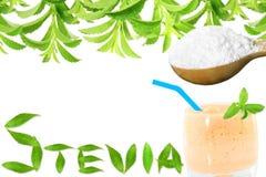 Lo stevia rebaudiana e la polvere verdi freschi dell'estratto in cucchiaio di legno con le foglie di vetro delle bevande mandano  Immagine Stock