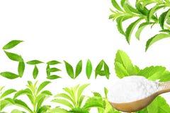 Lo stevia rebaudiana e la polvere verdi freschi dell'estratto in cucchiaio di legno con le foglie mandano un sms e mandano un sms Immagine Stock