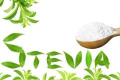 Lo stevia rebaudiana e la polvere verdi freschi dell'estratto in cucchiaio di legno con le foglie mandano un sms e mandano un sms Immagine Stock Libera da Diritti
