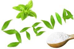 Lo stevia rebaudiana e la polvere verdi freschi dell'estratto in cucchiaio di legno con le foglie mandano un sms e mandano un sms Fotografia Stock