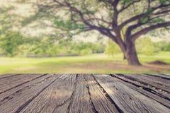 Lo stile d'annata del landscap in parco Immagine Stock