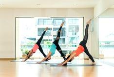 Lo stile di vita asiatico della gente che pratica e che si esercita vitale medita l'yoga nella stanza di classe Fotografie Stock Libere da Diritti