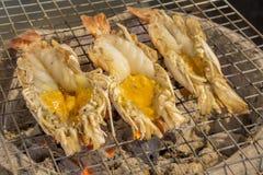 Lo stile tailandese di cucina, ha grigliato il gamberetto gigante del fiume immagine stock