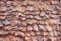 Lo strato di struttura ha asciugato le foglie sulla parete, fondo tailandese tradizionale della natura di progettazione fotografia stock