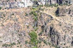 Lo streamdella montagnaa cascata sfocia nel fiume del canyon kazako Fotografia Stock Libera da Diritti