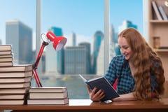Lo studente che studia con la pila di libri Fotografia Stock