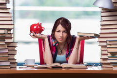 Lo studente della giovane donna che prepara per gli esami dell'istituto universitario Fotografia Stock