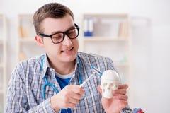 Lo studente di medicina che studia scheletro in aula durante la conferenza Fotografia Stock
