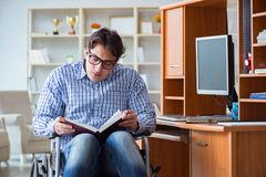 Lo studente disabile che studia a casa sulla sedia a rotelle Immagine Stock