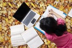 Lo studente impara con il computer portatile sulle foglie di autunno Fotografia Stock