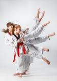 Lo studio ha sparato del gruppo di bambini che preparano le arti marziali di karatè Fotografie Stock