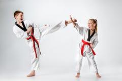 Lo studio ha sparato del gruppo di bambini che preparano le arti marziali di karatè Immagine Stock