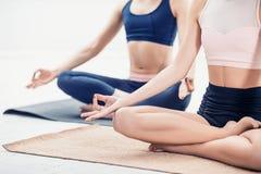 Lo studio ha sparato delle giovani donne che fanno gli esercizi di yoga su fondo bianco Immagini Stock Libere da Diritti