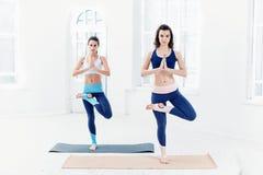 Lo studio ha sparato delle giovani donne che fanno gli esercizi di yoga su fondo bianco Fotografia Stock