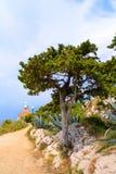 Lo SV Parco della penisola di Petar Fotografia Stock