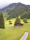 Lo svizzero ha designato le capanne nella valle delle alpi Immagine Stock