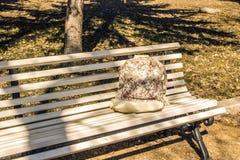 Lo zaino del ` s della ragazza su un banco nel parco fotografia stock libera da diritti