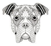 Lo zentangle della testa di cane del pugile ha stilizzato, vector, illustrazione, freehan immagini stock libere da diritti