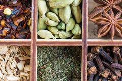 Lo zenzero, menta, chiodo di garofano, peperoncino rosso si sfalda, cardamomo verde, anice stellato, cinnamo immagine stock