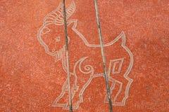 Lo zodiaco di cinese dodici Immagine Stock Libera da Diritti