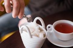 Lo zucchero è gettato in tè Fotografie Stock Libere da Diritti