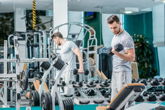 Load on the biceps of dumbbells. Successful athlete working out stock photo