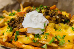 Loaded Fries Royalty Free Stock Images