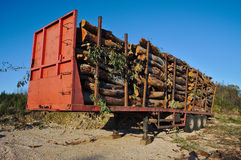 Loaded log trailer Royalty Free Stock Photo