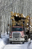 Loaded Logging Truck Driving On Road Stock Image