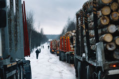 Loaded long vehicles on winter road among forest Stock Photo