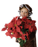Loaded with Poinsettias Royalty Free Stock Images