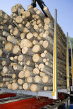 Loaded Timber. Close up of loaded timber Royalty Free Stock Photo
