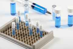 Loaded vial rack containing blue fluid and syringe Royalty Free Stock Image