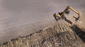 The loader loads the wooden beams in the truck stock photography