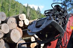 Loader timber truck. In mountains Stock Photography