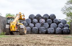 Loader tractor stacking round bales in a stack Stock Photos