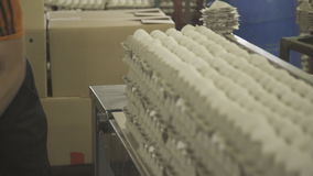 Loader transfers eggs in a paper box on a conveyor line. stock video footage
