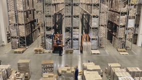 Loaders and forklift transport containers on big modern warehouse, time lapse. stock video footage